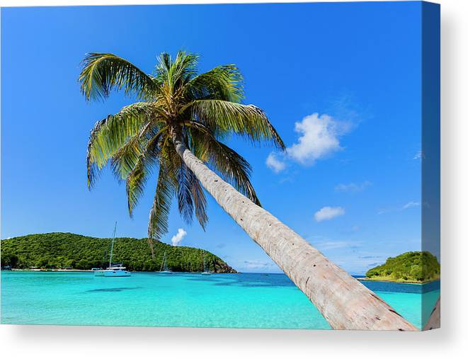 Water's Edge Canvas Print featuring the photograph Salt Whistle Bay, Mayreau by Argalis