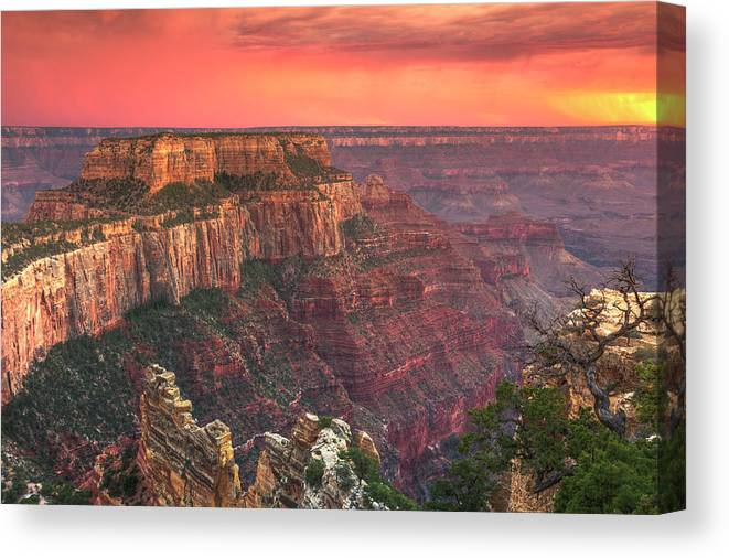 Tranquility Canvas Print featuring the photograph Grand Canyon National Park by Michele Falzone