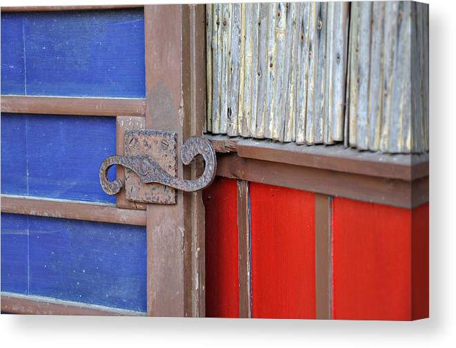 Color Canvas Print featuring the photograph Color and Texture by Todd Hartzo