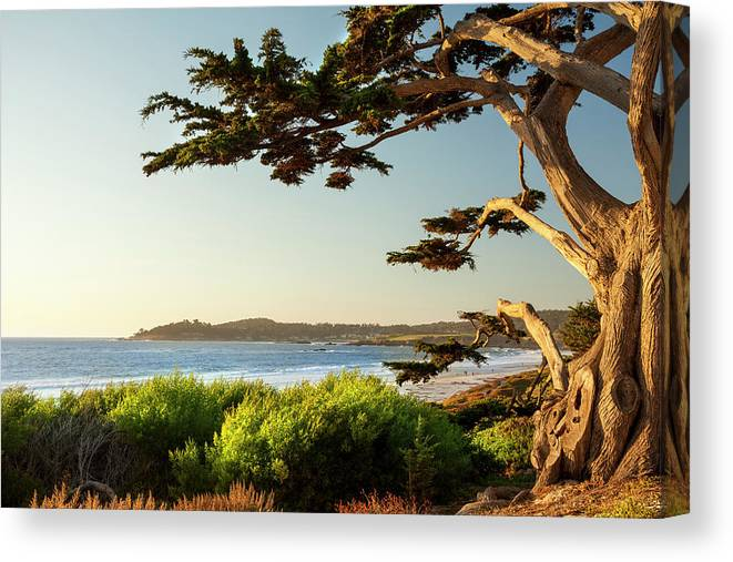 Scenics Canvas Print featuring the photograph Colorful Beachfront In Carmel-by-the-sea by Pgiam