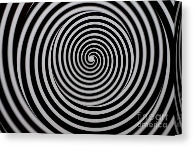 Dizzy Spinner Art Canvas Print Canvas Art By Liane Wright