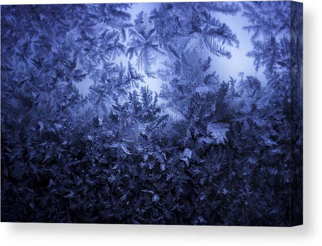 Ice Canvas Print featuring the photograph Frost on window #3 by Nathan Seavey