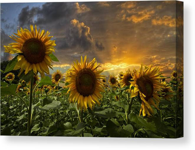 Austria Canvas Print featuring the photograph Glory by Debra and Dave Vanderlaan