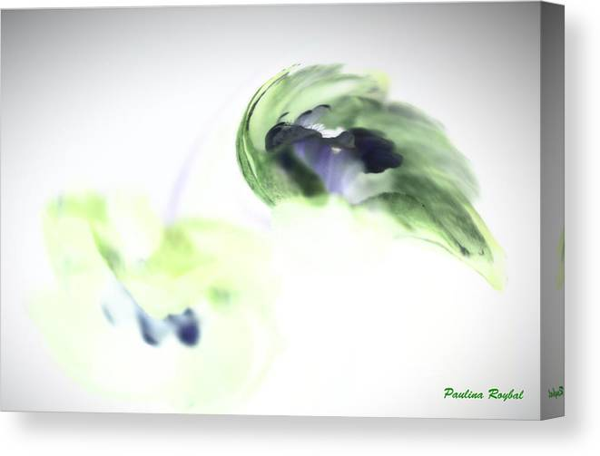 Abstract Phototgraphy Canvas Print featuring the photograph Incana abstract 2 by Paulina Roybal