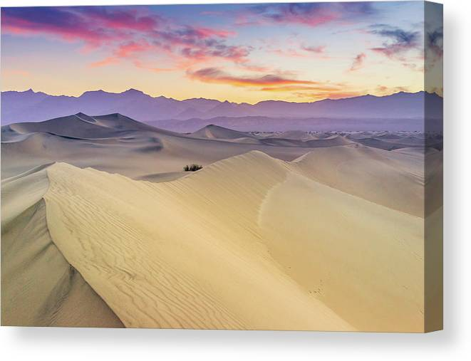 Tranquility Canvas Print featuring the photograph Mesquite Flat Sand Dunes by Zx1106