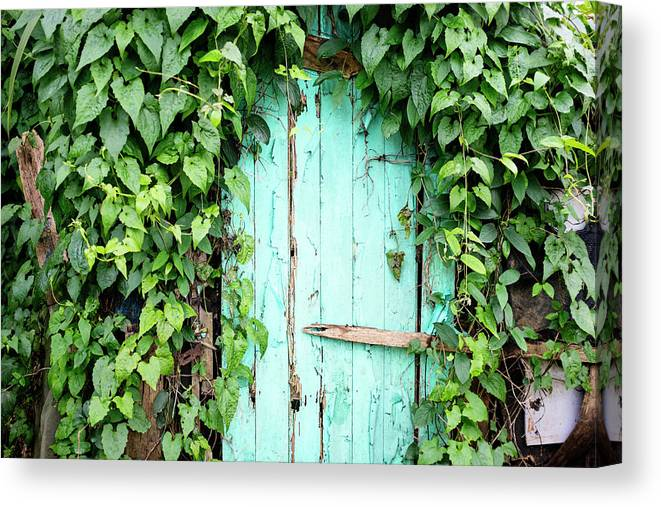 Outdoors Canvas Print featuring the photograph Old Wooden Door by Real444