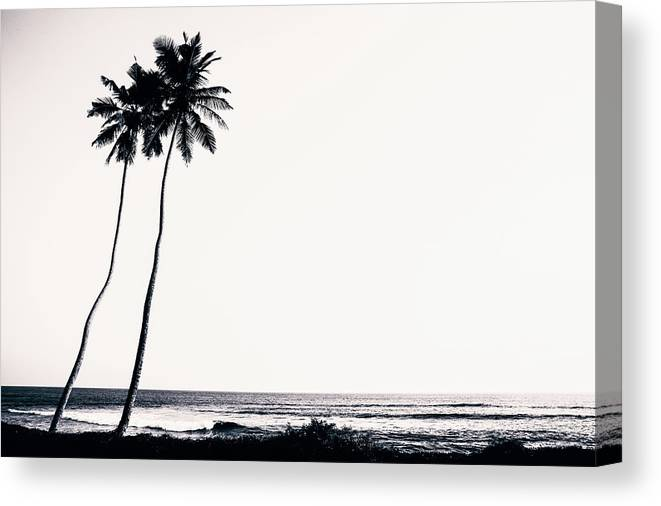 Empty Canvas Print featuring the photograph Palm Trees And Beach Silhouette by Chrispecoraro