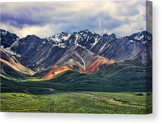Polychrome Canvas Print featuring the photograph Polychrome by Heather Applegate