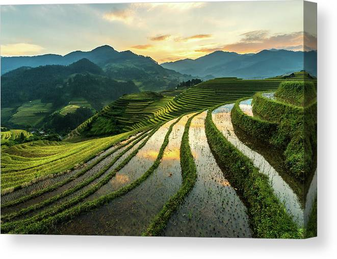 Scenics Canvas Print featuring the photograph Rice Terraces At Mu Cang Chai, Vietnam by Chan Srithaweeporn