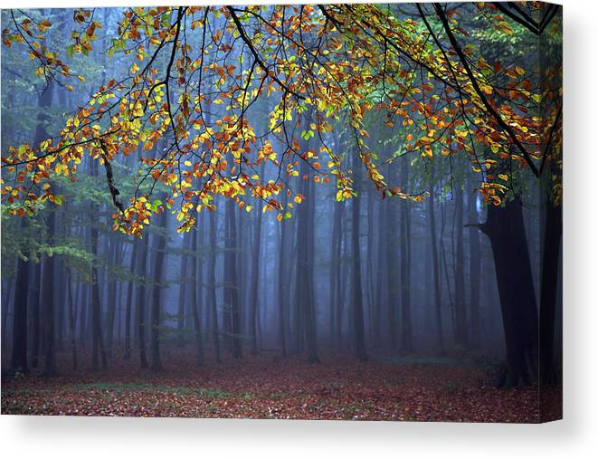 Autumn Canvas Print featuring the photograph Seconds Before The Light Went Out by Roeselien Raimond