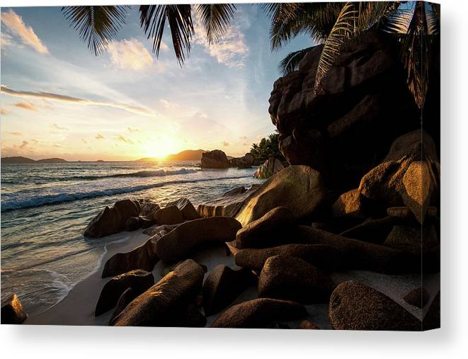 Water's Edge Canvas Print featuring the photograph Sunrise Framed By Palm Trees And Rock by Pitgreenwood