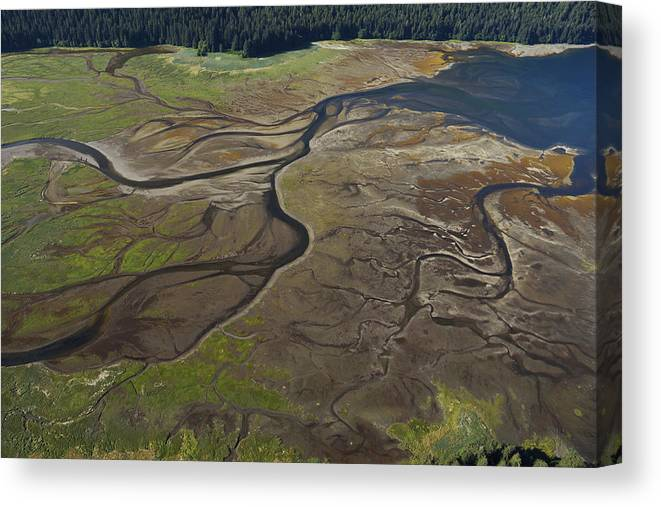 530682 Canvas Print featuring the photograph Tidal Flat Inside Passage Alaska by Hiroya Minakuchi