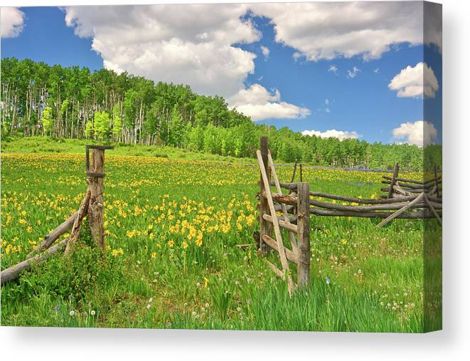 Tranquility Canvas Print featuring the photograph Welcome To Heaven On Earth by Amy Hudechek