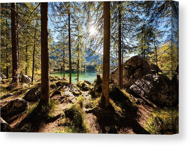 Tranquility Canvas Print featuring the photograph Zauberwald In Autumn by Jorg Greuel