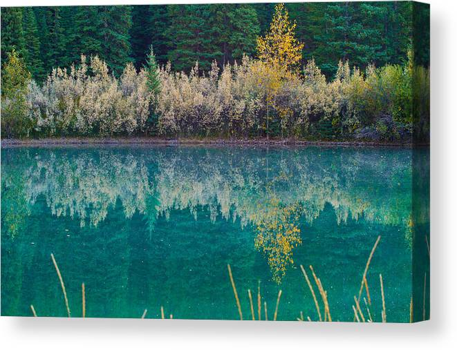 Nature Canvas Print featuring the photograph Fall Reflections by Manju Shekhar