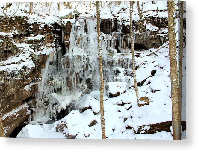 Ice Canvas Print featuring the photograph Falling Springs by Carolyn Postelwait