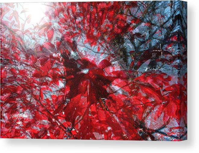 Black And Red Crescendo Canvas Print featuring the photograph Black and Red Crescendo by Seth Weaver