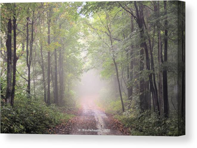 Trees Canvas Print featuring the photograph Foggy Country Road by Carolyn Postelwait