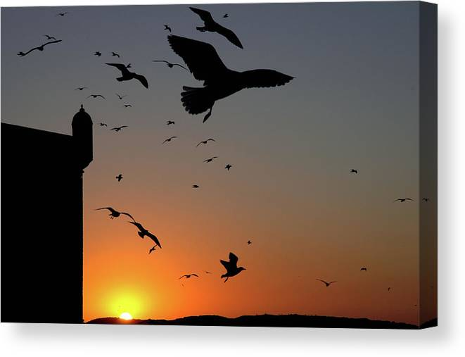 Morocco Canvas Print featuring the photograph Moroccan sunset by John Banegas