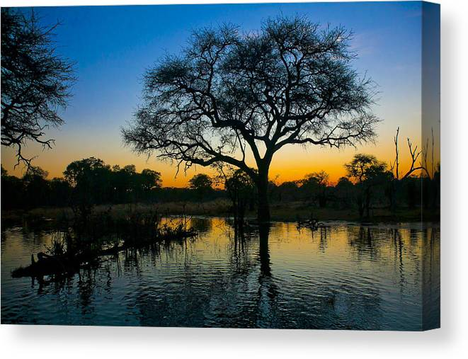 Botswana Canvas Print featuring the photograph Okavango by Andy Bitterer