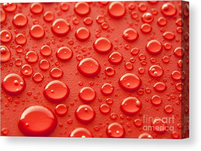 Water Canvas Print featuring the photograph Red water drops by Blink Images