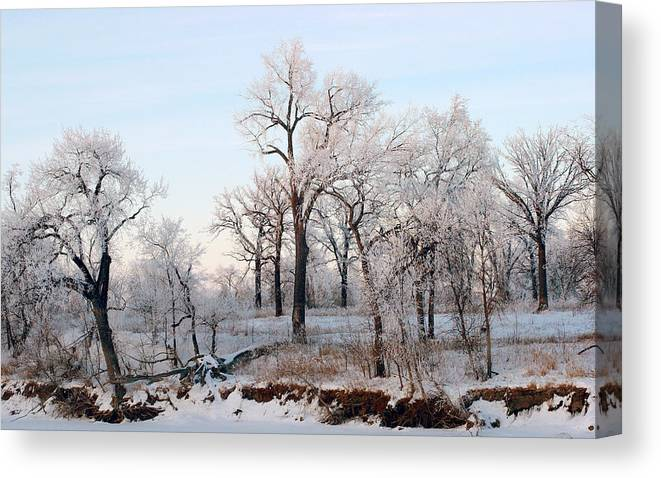 Frost Canvas Print featuring the painting Along the River by Steve Augustin