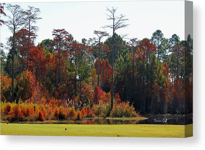 Autumn Canvas Print featuring the photograph Autumn View From My Window II by Suzanne Gaff