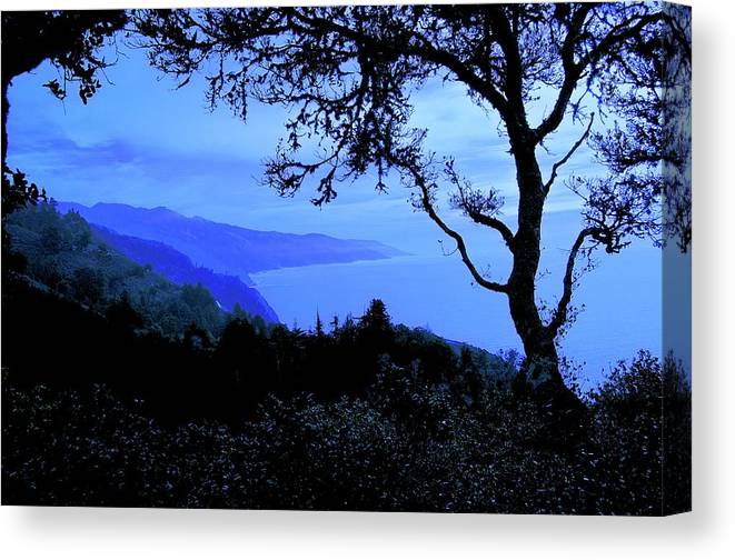 Nature Canvas Print featuring the photograph Big Sur Blue, California by Zayne Diamond Photographic