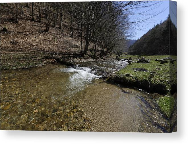 Above Canvas Print featuring the photograph Clear water Shteaza near Rasinari by Adrian Bud