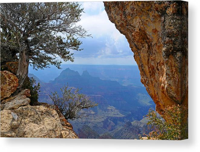 Grand Canyon North Rim Canvas Print featuring the photograph Grand Canyon North Rim Window in the Rock by Victoria Oldham