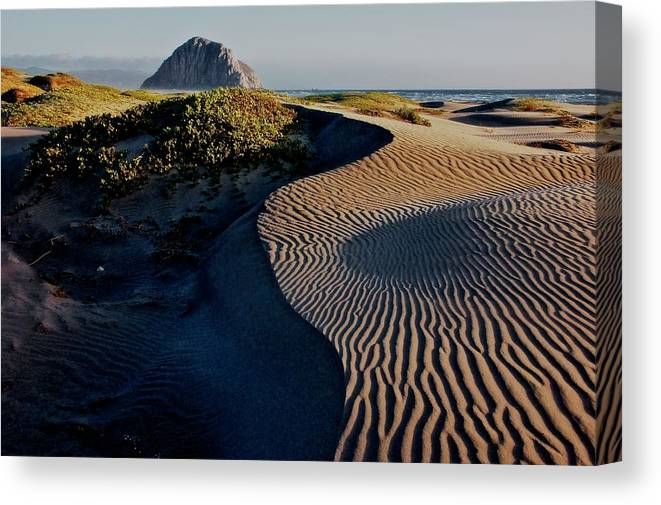 Nature Canvas Print featuring the photograph Morro Strand State Beach, California by Zayne Diamond Photographic
