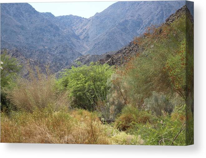 Palm Desert California Canvas Print featuring the photograph Mountain Scene in Palm Desert by Colleen Cornelius