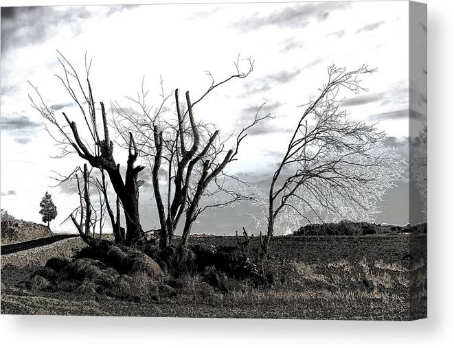 Photograph Canvas Print featuring the photograph My Home Town-After The Storm by Robert Litewka