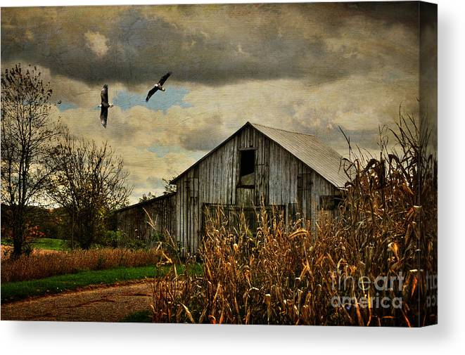 Barn Canvas Print featuring the photograph On The Wings Of Change by Lois Bryan