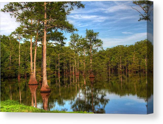 Quiet Canvas Print featuring the photograph Quiet Afternoon At The Bayou by Ester McGuire