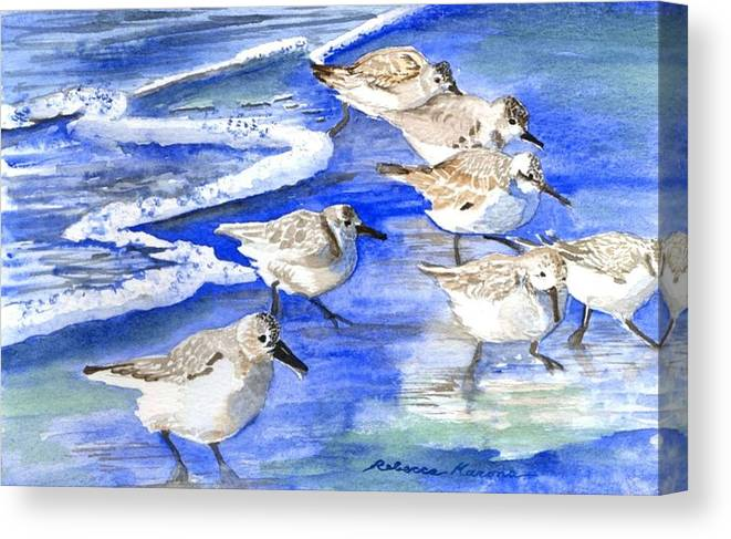 Plovers Canvas Print featuring the painting Shore Birds by Rebecca Marona