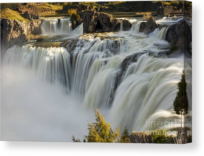 Shoshone Falls Canvas Print featuring the photograph Shoshone Falls in Spring by Dennis Hammer