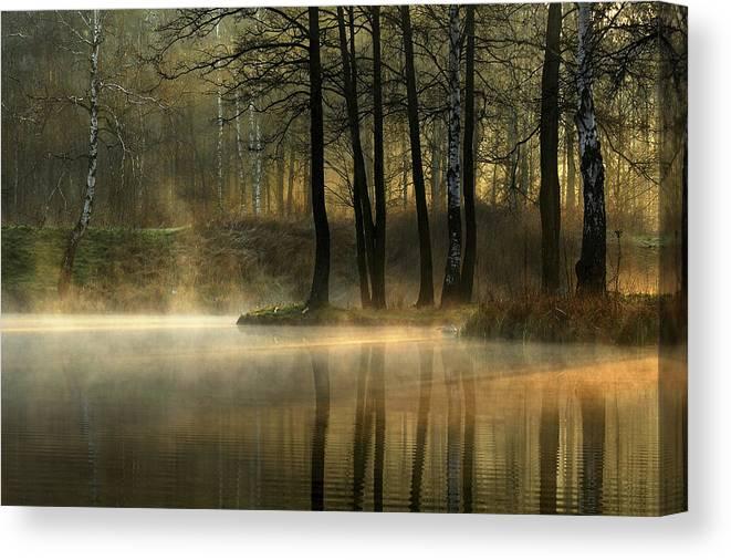 Pond Canvas Print featuring the photograph Silent Light. by Agnieszka Jankowska