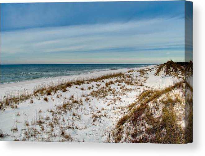 Sand Canvas Print featuring the photograph St. Joseph Peninsula Dunes by Rich Leighton