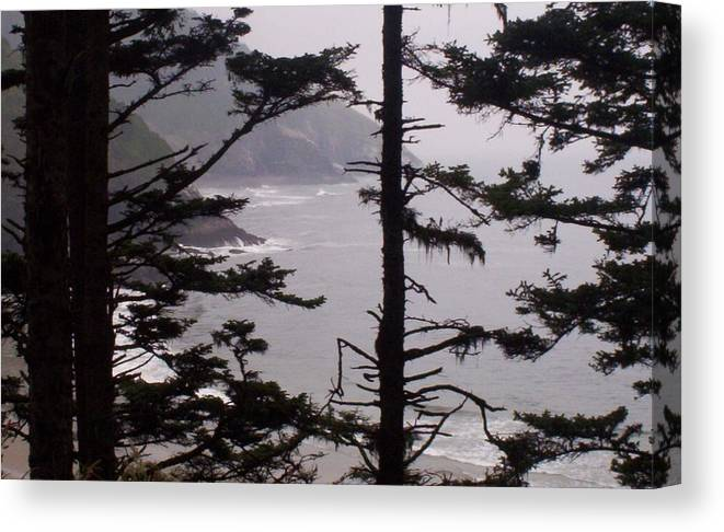 Ocean Canvas Print featuring the photograph The edge of my dreams by J Bauer