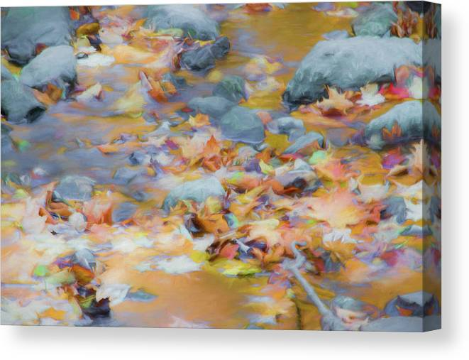 Abstracts Canvas Print featuring the photograph The Lightness of Autumn by Marilyn Cornwell