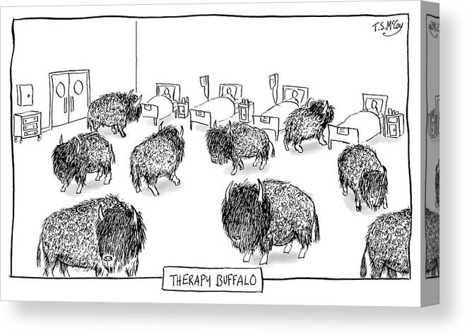 Therapy Buffalo Canvas Print featuring the drawing Therapy Buffalo by The Surreal McCoy
