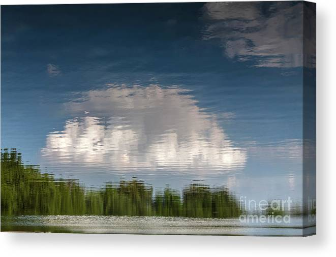 Abstract Canvas Print featuring the photograph Thought by Larry Braun