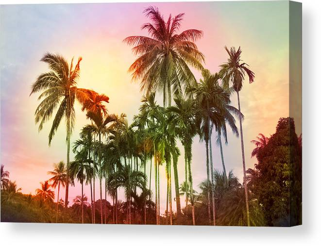 Tropical Canvas Print featuring the photograph Tropical 11 by Mark Ashkenazi