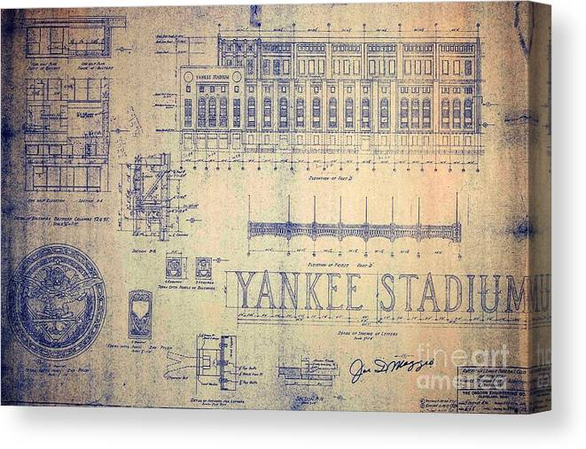 Joe Dimaggio Canvas Print featuring the drawing Vintage Yankee Stadium Blueprint by Peter Ogden Gallery