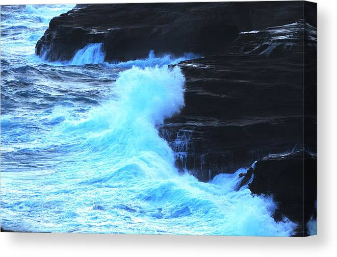 Ocean Canvas Print featuring the photograph Where The Land Meets The Ocean by Richard Henne