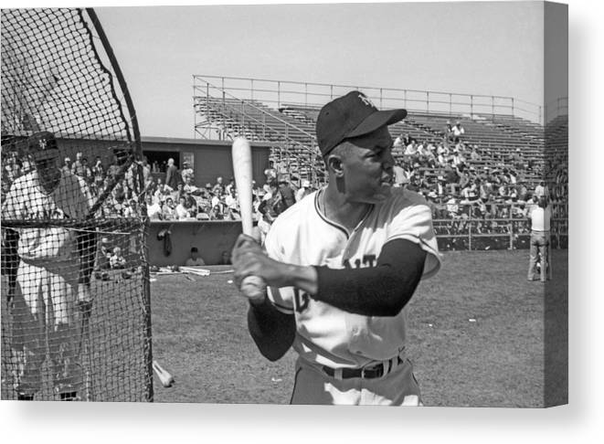 1950-1959 Canvas Print featuring the photograph Giants Spring Training by Michael Ochs Archives