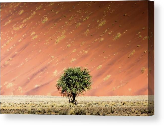 Tranquility Canvas Print featuring the photograph Namib Desert by Manuel Romaris