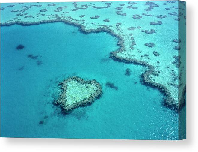 Seascape Canvas Print featuring the photograph Aerial Of Heart-shaped Reef At Hardy by Holger Leue