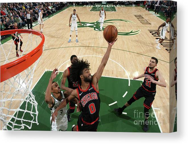Coby White Canvas Print featuring the photograph Chicago Bulls V Milwaukee Bucks by Gary Dineen